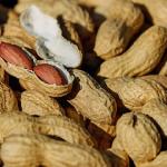 落花生とピーナッツの違いとは?