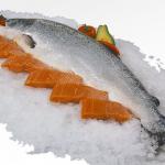 「サーモン」と「鮭」何が違うの?