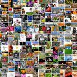 写真集とフォトブックの違いって何?