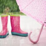 梅雨と秋雨の違いについて