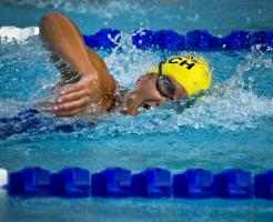 水泳 競泳 違い