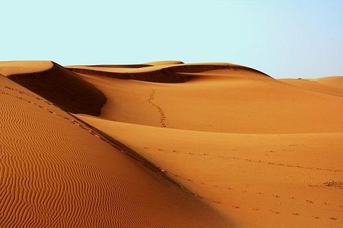 砂漠 砂丘