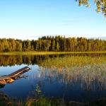 湖と沼、池の違いとは?!